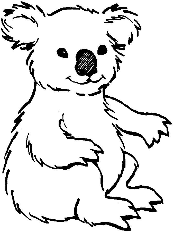 Koala bear clipart #6