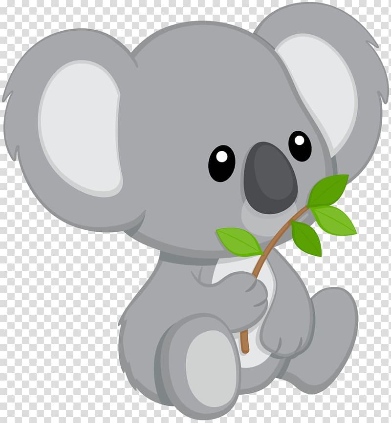 Koala Bear , koala transparent background PNG clipart.