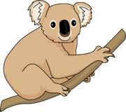 Animals: Koala Clipart Pictures.