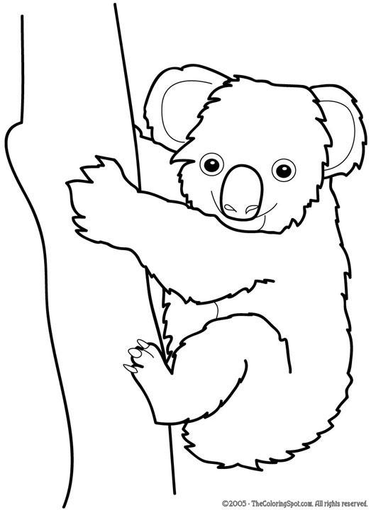 Koala clipart black and white 4 » Clipart Station.