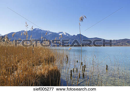 Picture of Germany, Bavaria, Upper Bavaria, Kochel, Herzogstand.