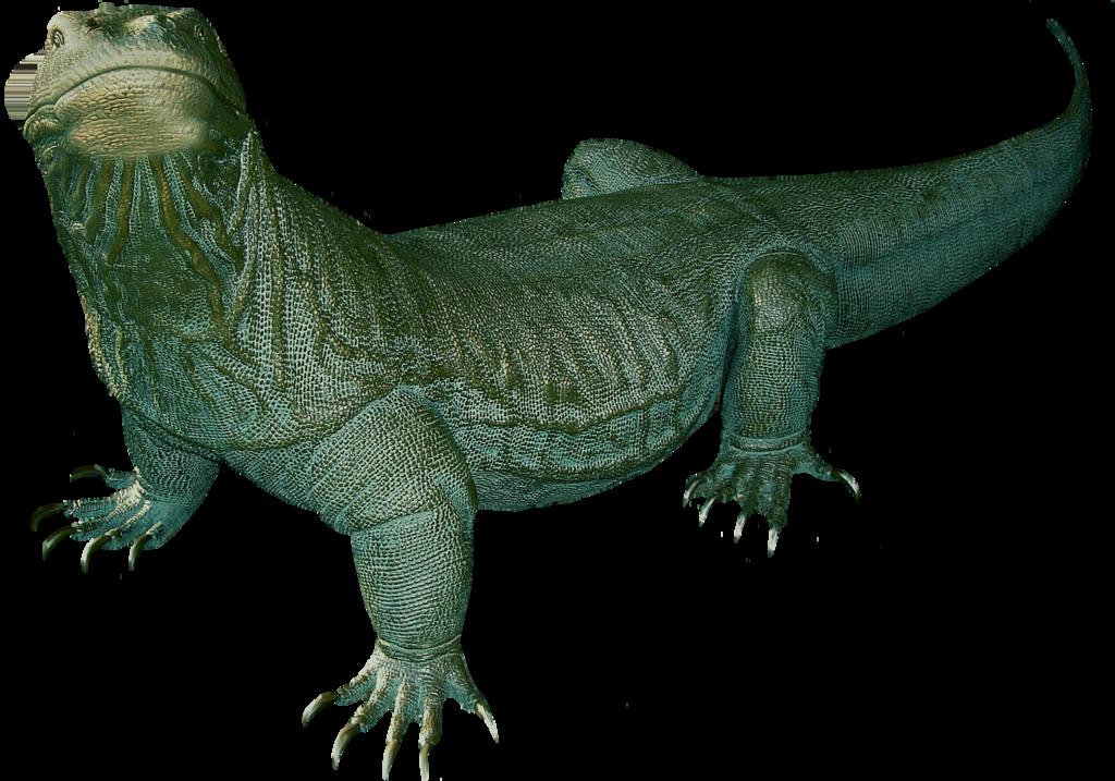 Komodo Dragon Clip Art.