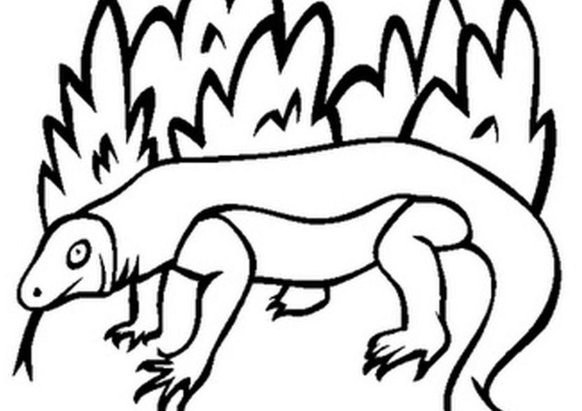 Komodo Dragon Clipart.