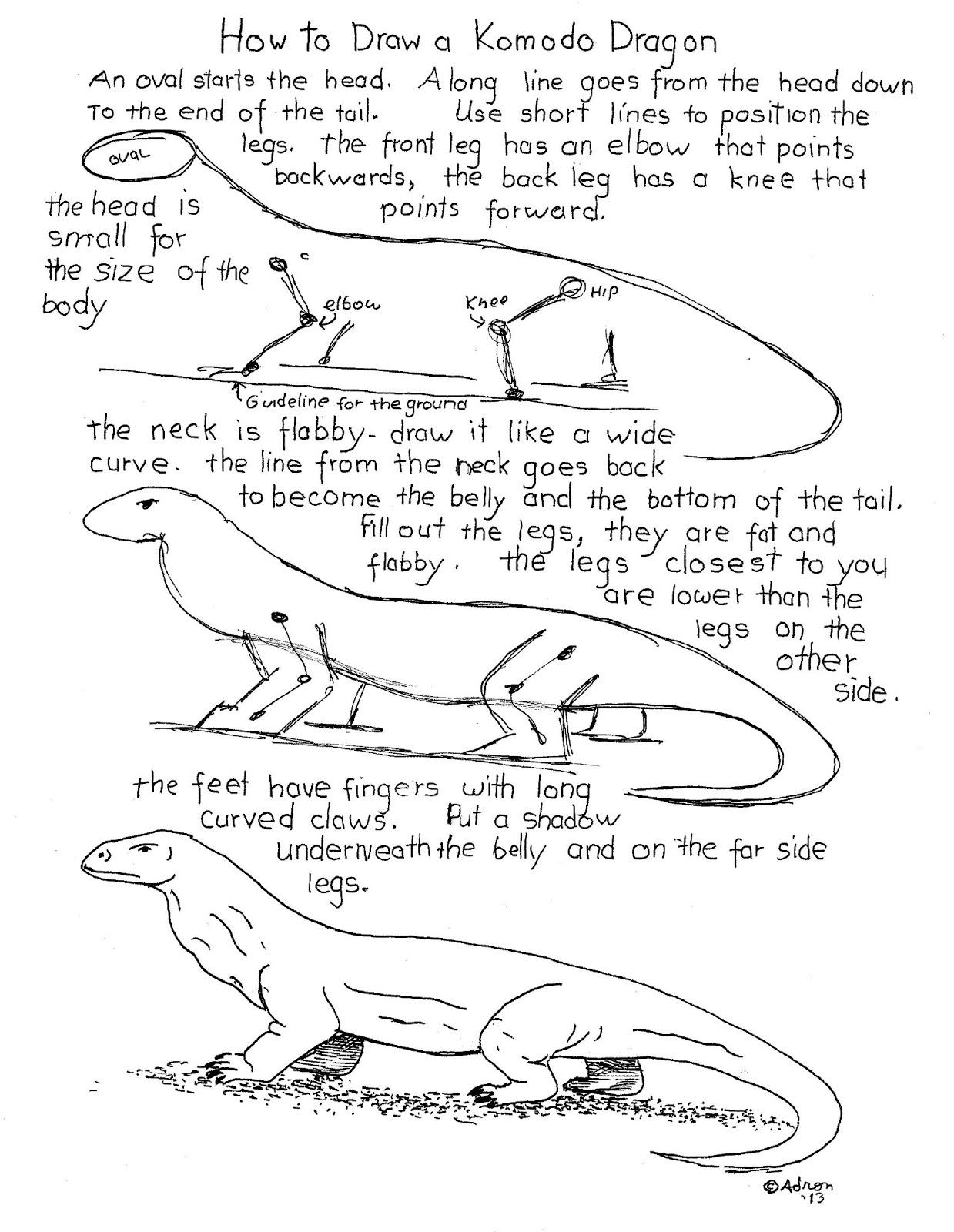 How To Draw A Komodo Dragon Head.