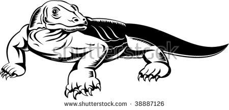 Komodo Dragon Stock Images, Royalty.