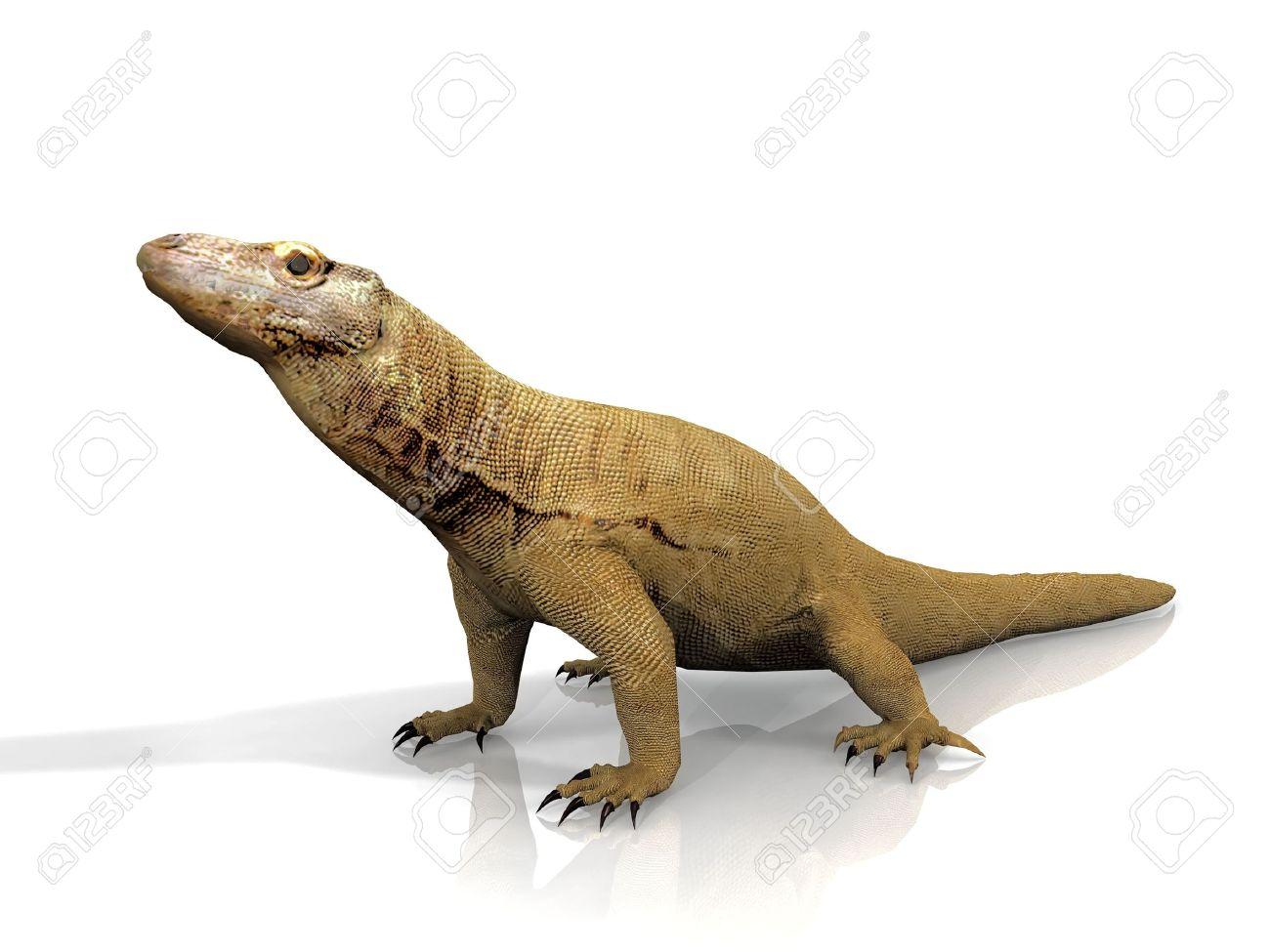 Best Komodo Dragon Clipart #16466.