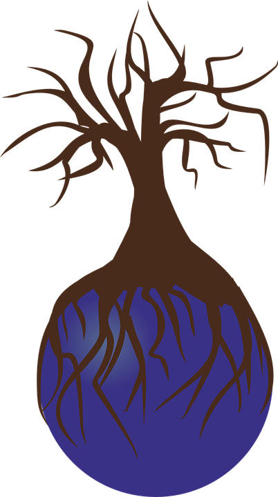 Free vector graphic: Tree, Birch, Landscape, Nature.