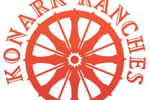 Konark wheel png 4 » PNG Image.