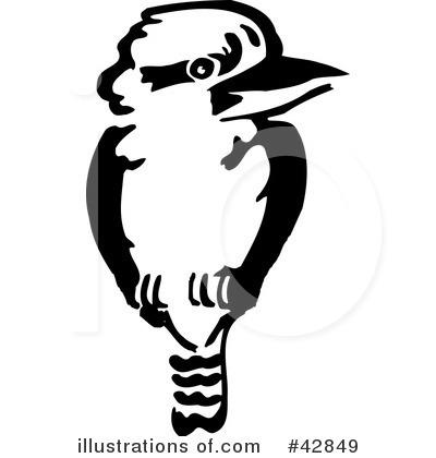 Kookaburra Clipart #42849.