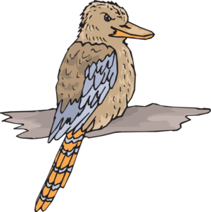 Kookaburra Clip Art at Clker.com.