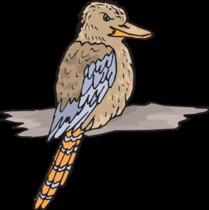 Kookaburra Clip Art at Clker.com.