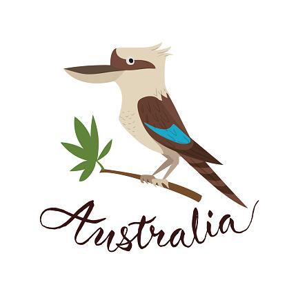 Kookaburra Clipart.