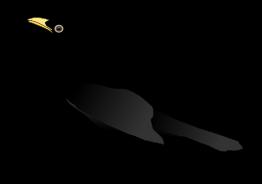 Brewer's Blackbird Clip Art Download 15 clip arts (Page 1.