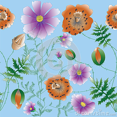 Sketch Of Poppy Flowers Stock Photography.