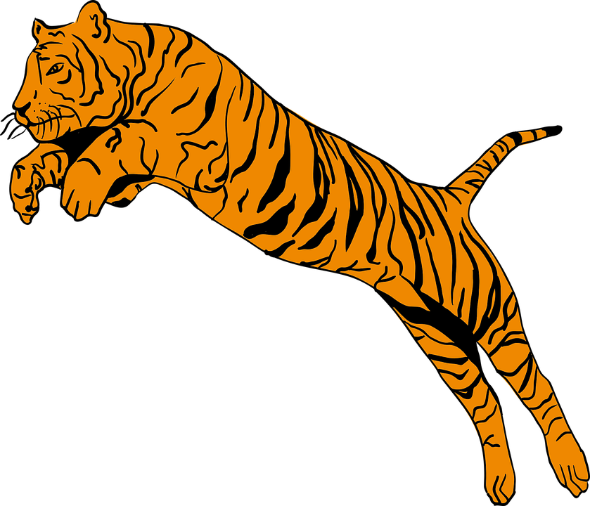 Kostenlose Tier Pngs & Free Kostenlose Tier s.png Transparent Images.
