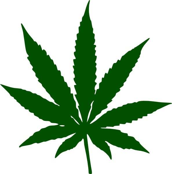 Kotik Cannabis clip art Free vector in Open office drawing svg.