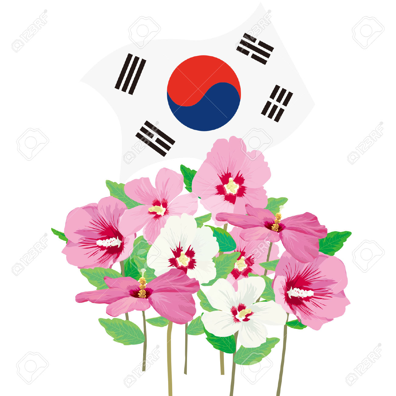 6,538 Korean Flag Stock Vector Illustration And Royalty Free.