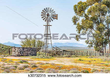 Stock Image of Windmill, dam and a kraal k30732315.