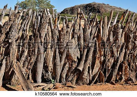 Stock Photo of Fence of an Ovahimba kraal k10580564.