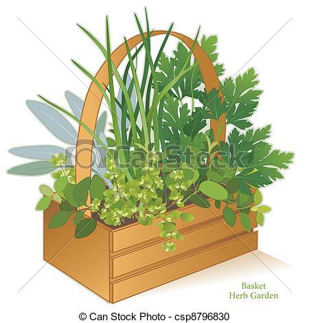 Garden Basket Clipart.