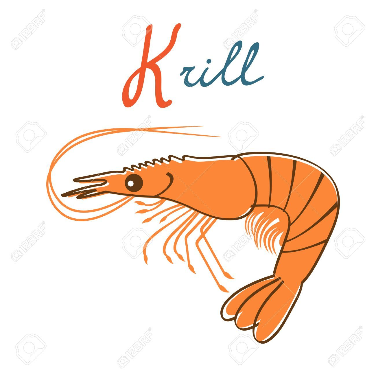 Illustration of K is for Krill » Clipart Portal.