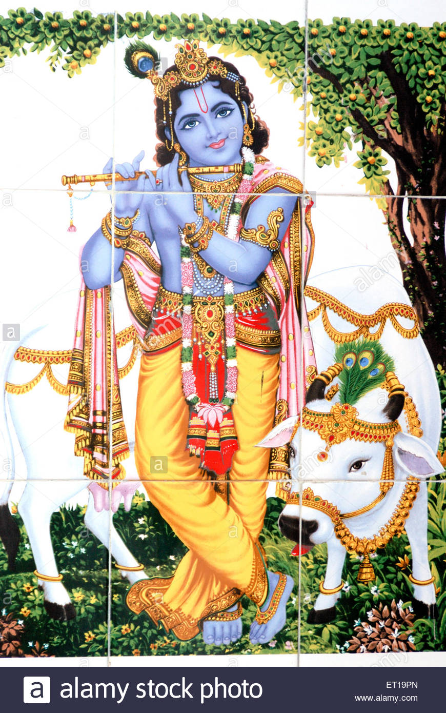 God Shri Krishna With Flute And Cow Pain #92275.
