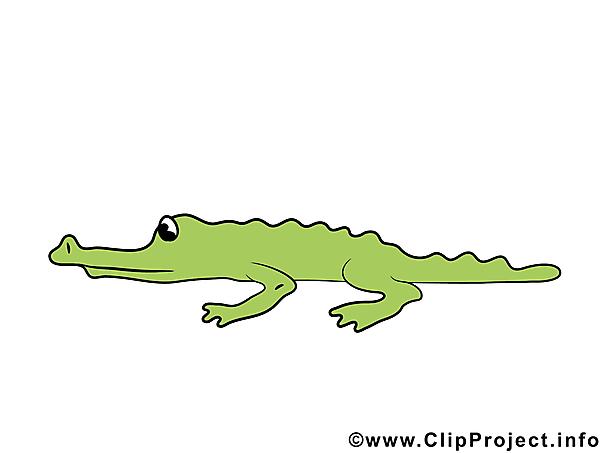 Comic Krokodil.