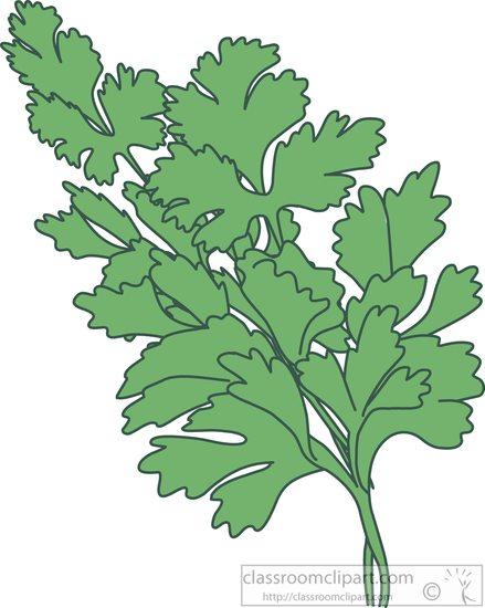 Herbs : herbs.