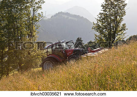 "Stock Photography of ""Tractor mowing hay, Soll, Kufstein District."