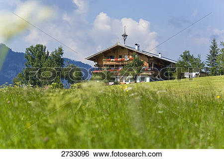 Stock Images of Farmhouse in field, Kaisergebirge, Scheffau am.
