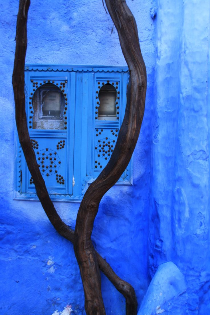 1000+ images about The Blues on Pinterest.