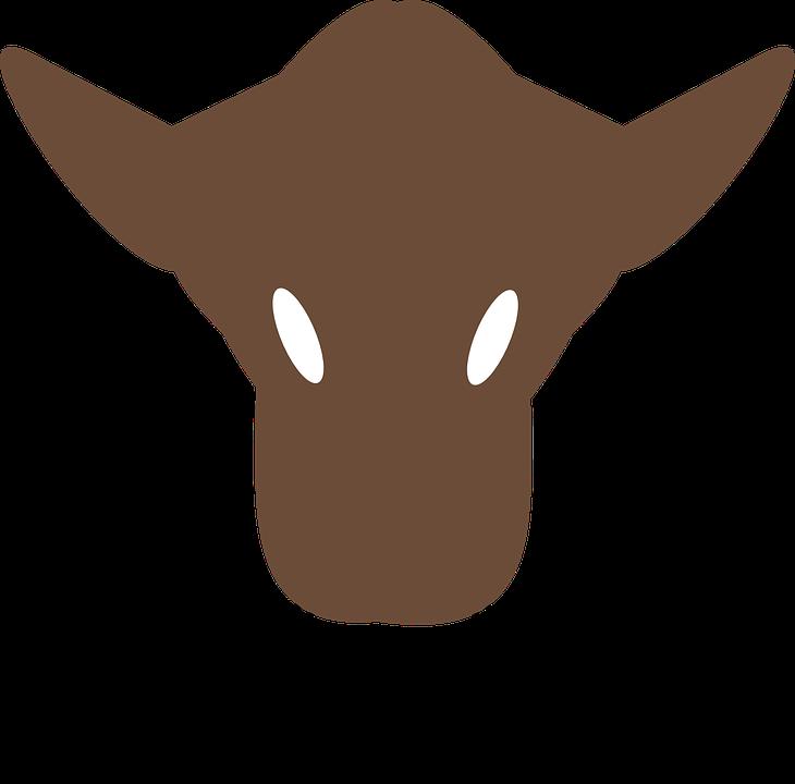 Cow, Nose.
