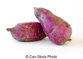 Kumara Stock Photo Images. 87 Kumara royalty free pictures and.
