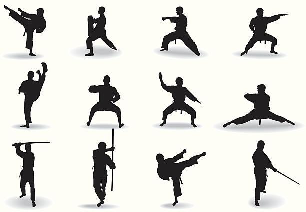 Best Kung Fu Illustrations, Royalty.