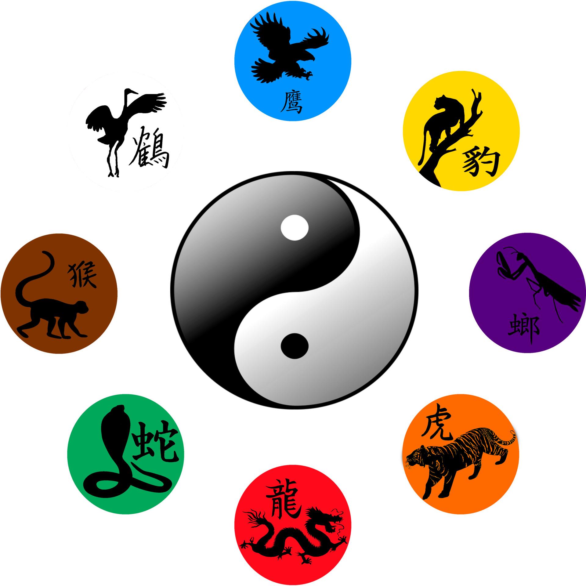 dragon kung fu.