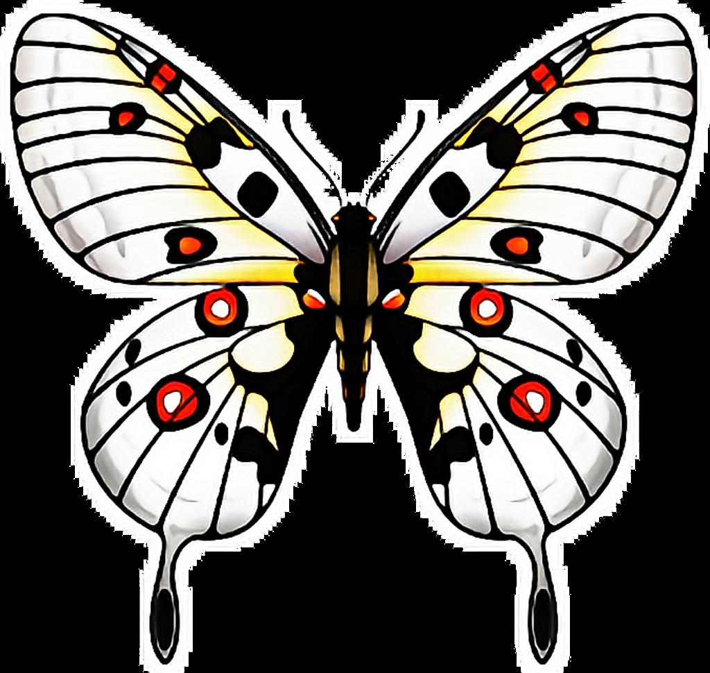 butterfly #butterflies #papillon #mariposa #ftestickers.