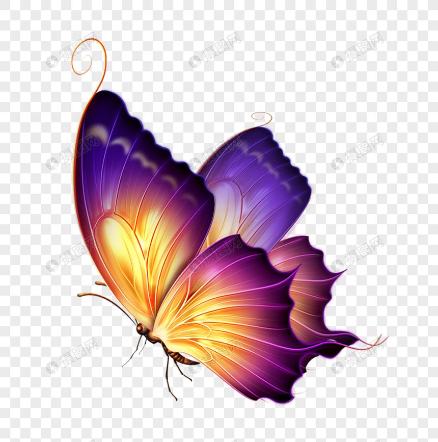 warna kupu kupu gambar unduh gratis_ Grafik 400519581_Format gambar.
