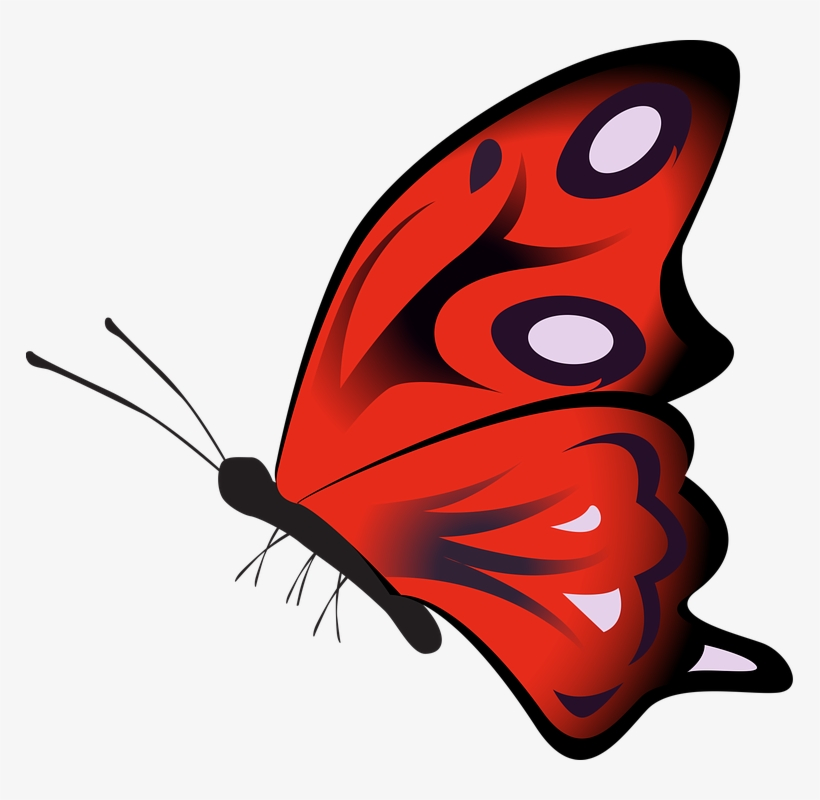 Red Butterfly Cliparts 14, Buy Clip Art.