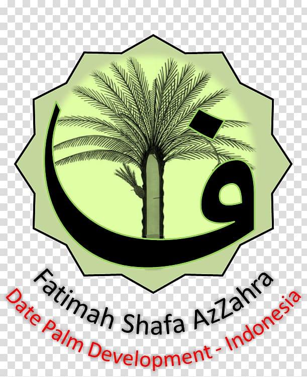 CV Berkah Pohon Kurma Benih Date palm Seed Agriculture.