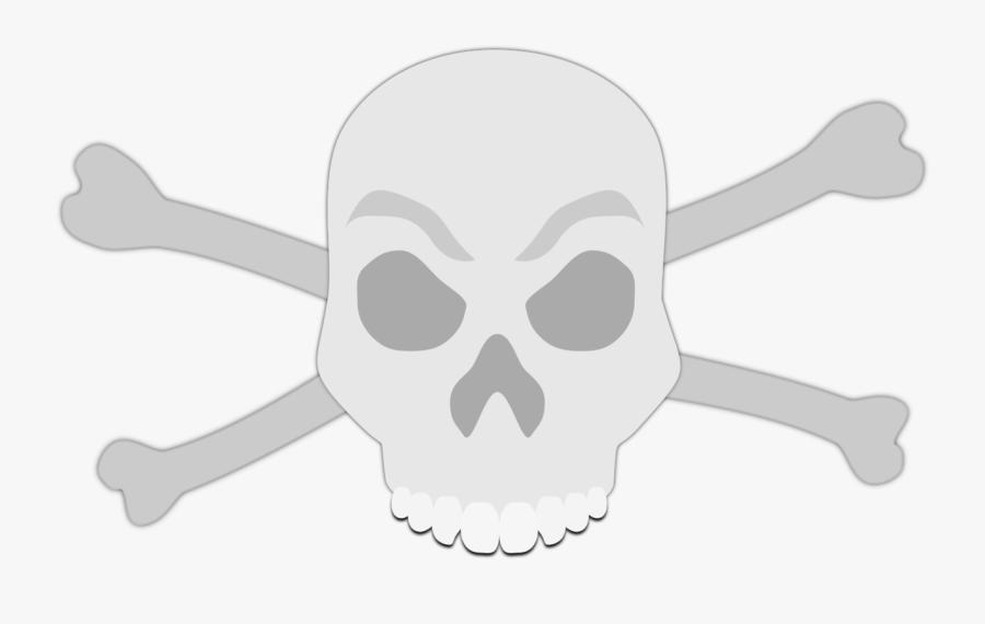Head,skull,jaw.