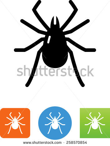 Tick Insect Stock Photos, Royalty.