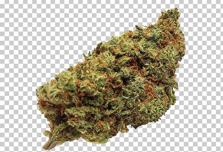 Cannabis Sativa Kush Cannabidiol Medical Cannabis PNG, Clipart.