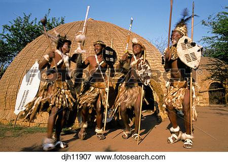 Picture of Zulu Warriors Dancing and Chanting, Simunye, KwaZulu.