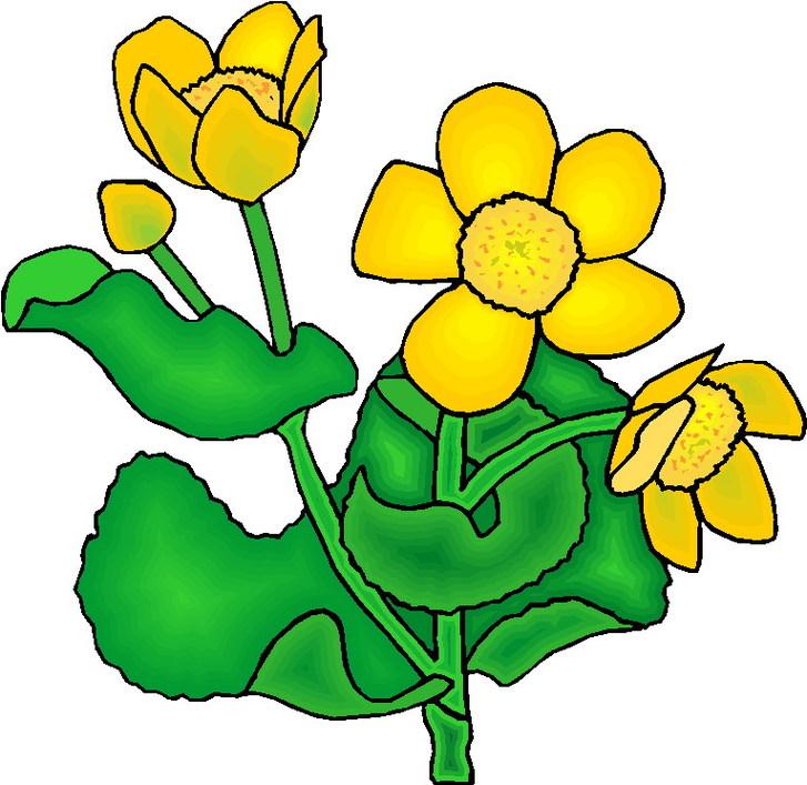 Clip Art Images Of Plants.