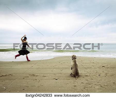 Stock Photo of Weimaraner Jagdhund und winkende Frau am Strand.