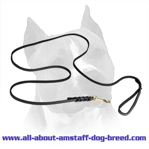 Get Long Amstaff Show Leather Leash.
