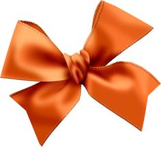 Picasa, Album and Bows on Pinterest.