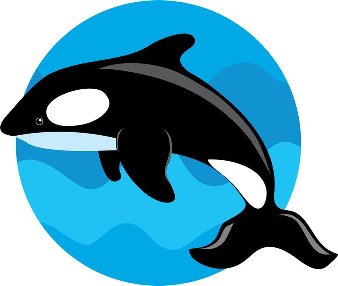 Vector lindo de la ballena.