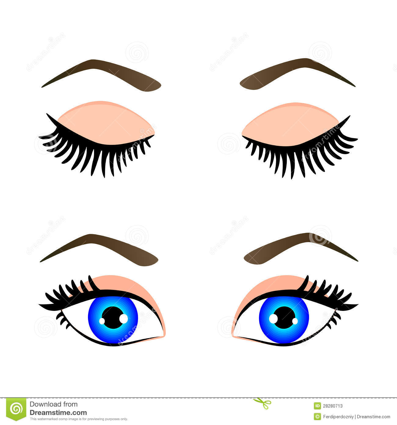 Silueta De Ojos Azules Y De La Ceja Ilustraciones Stock, Vectores.