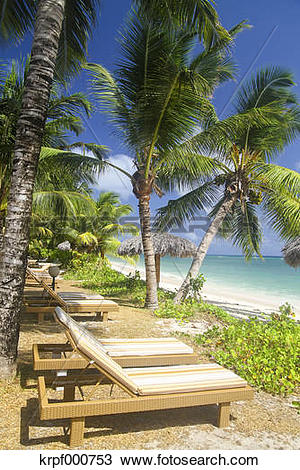 Stock Photo of Seychelles, La Digue Island View of the beach Anse.